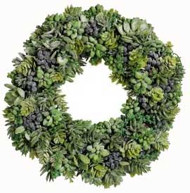 Wreath of Succulents - Click Image to Close